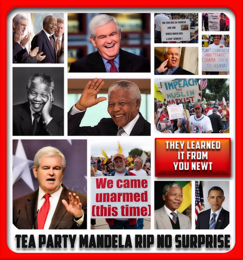 Tea Party Rips Mandela No Surprise